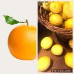 オレンジの香りが好き?レモンの香りが好き?なりたい自分になれるのはどっち?